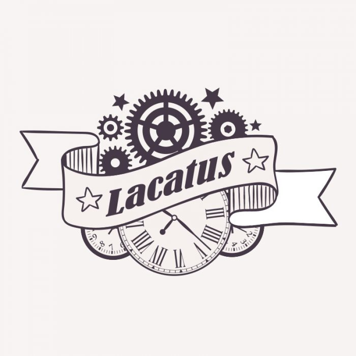 Victoria Lacatus, empresa de joyas
